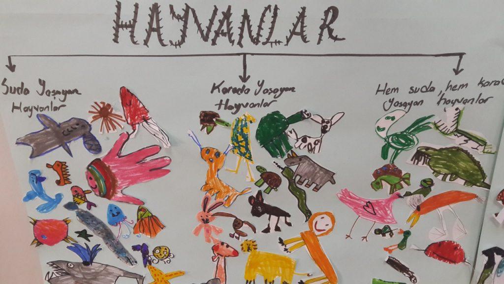 Okul öncesi öğrencilerimizle Hayvanları Tanıdık özel Pev Okulları